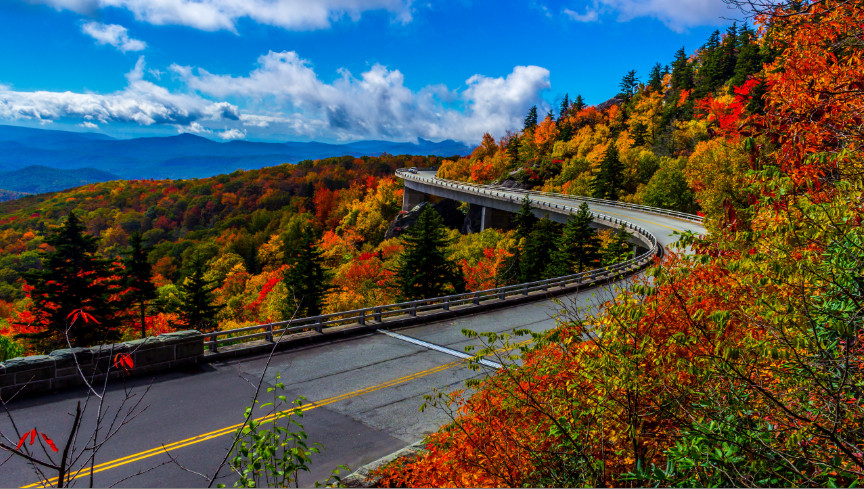 fall-colors-road-blue-ridge-parkway